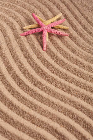 Two colored starfish on textured wavy sand. Top view.