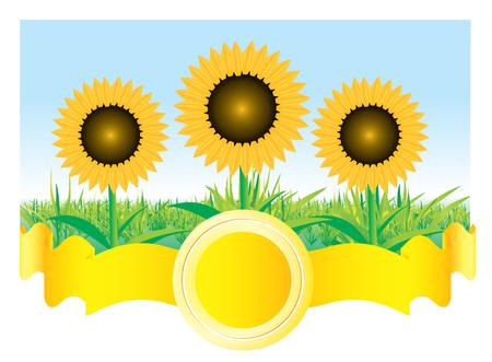 Beautiful sunflower background Stock Vector - 5835434