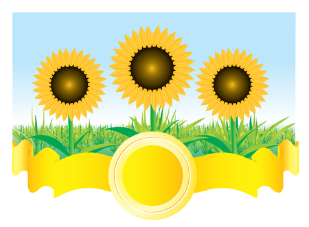 Beautiful sunflower background Stock Vector - 5835434