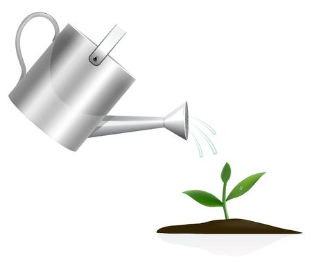 graine tournesol: Jeunes plantes avec arrosoir Illustration
