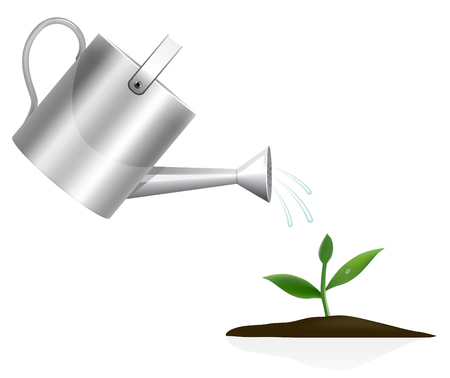 water can: Young plant with watering can