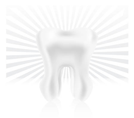 photo-realistic tooth illustration Stock Vector - 7095221