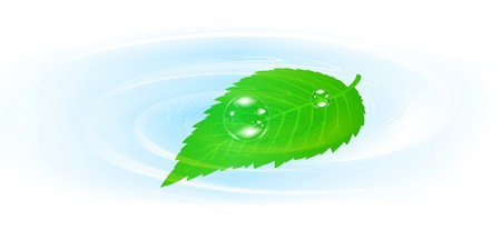 airiness: Single green leaf over the water   Illustration
