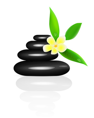 zen flower: Vector spa stones and frangipani isolated on white background