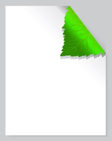 biological: Leaf Page