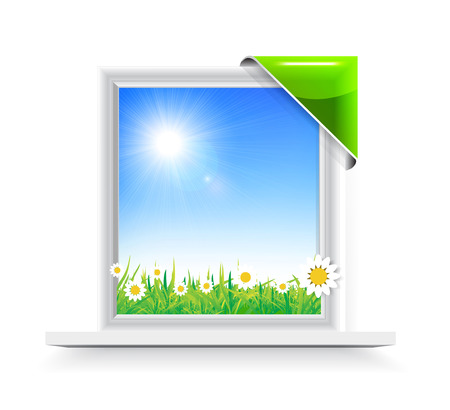 Plastic window with badge with a view of the chamomile field Vector