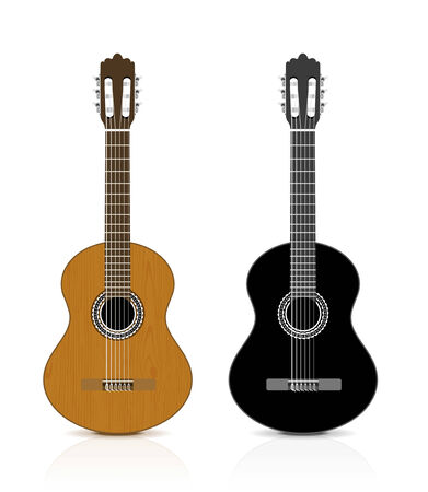 Classical guitar on white illustration Vector