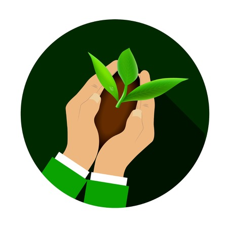 Hands holding young plant. Ecology or business concept Vector