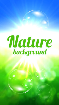 Nature background  with sun and green field Stock Photo - 28909869
