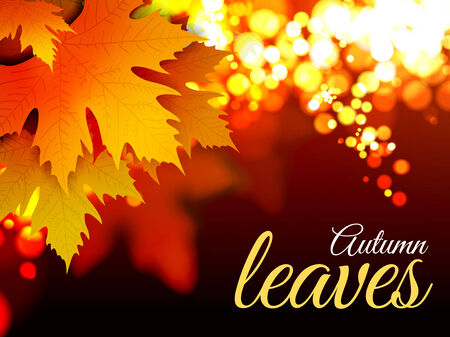 Autumn leaves. Vector illustration with bokeh effect Vector