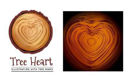 sliced tree: Wooden cross section of the heart shape Illustration