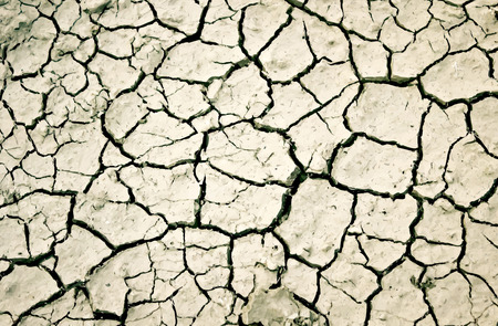 dryness: The cracks texture. Illustration