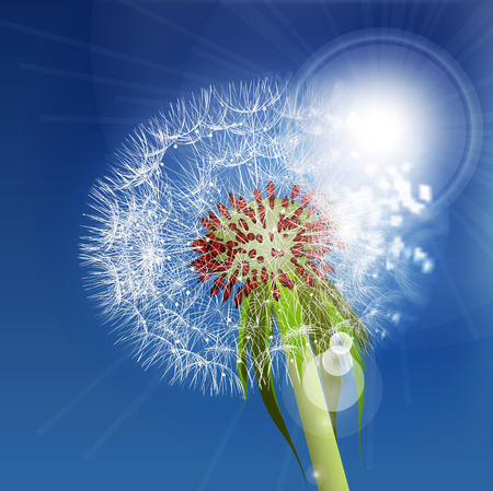 blown: Dandelion seeds blown in the blue sky.