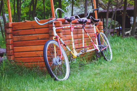 tandem: Bicycles for two passengers, the tandem on the green grass