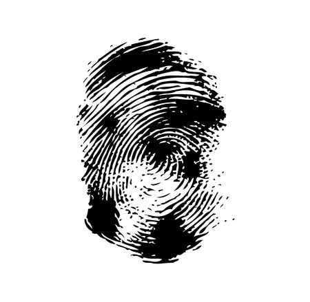 odcisk kciuka: Fingerprint on a white background. Vector illustration close-up