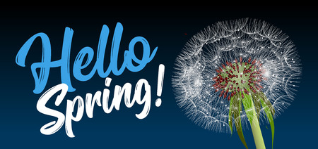 Text message hello spring, against a background of a spring landscape with a dandelion close-up