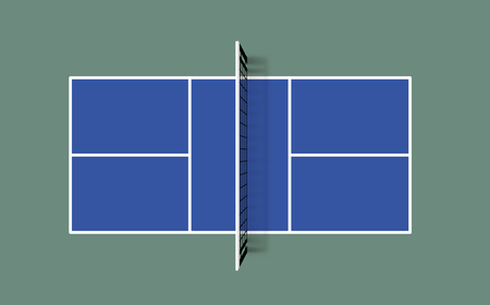 Pickleball field. Top view vector illustration with grid and shadow