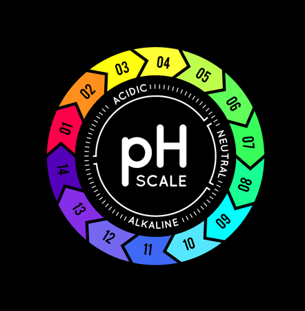 pH meter for measuring acid alkaline balance. infographics in the circle form with pH scale on black background
