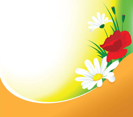 Spring background with the beautiful meadow flowers Vector