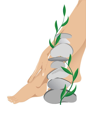 Women of the leg against the white background  Illustration