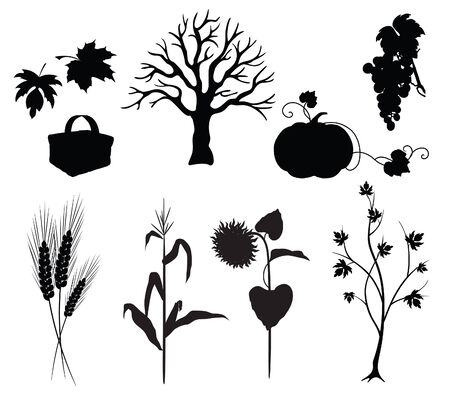 Autumn silhouettes on white background, vegetables and tree Illustration