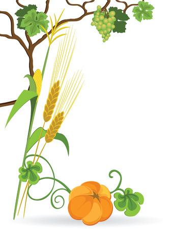 Autumn still life of vegetables on white background Stock Vector - 7544203