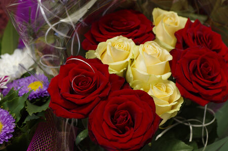 Festive bouquet of red and yellow roses close-up