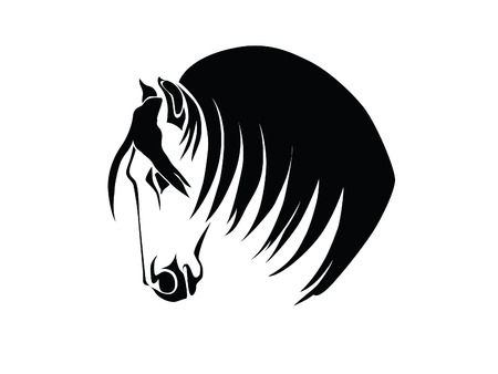 Stencil a horses head on a white background