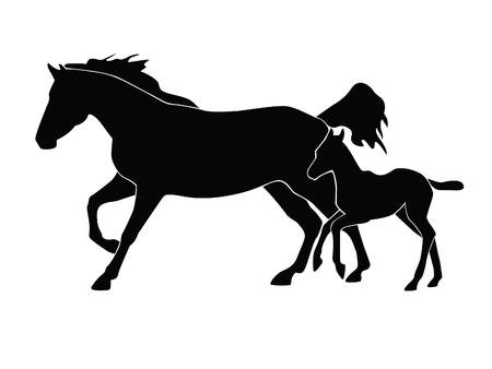 Silhouette of horse with a foal on a white background