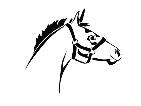 Stencil horses head on a white background Illustration