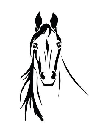 Stencil la cabeza de un caballo en un fondo blanco Foto de archivo - 57077081