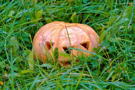 pumpkin for Halloween in the Park in the grass among the leaves