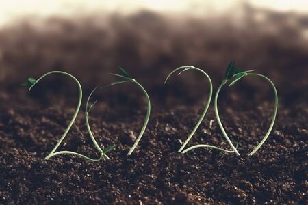 2020 growth and farm concept