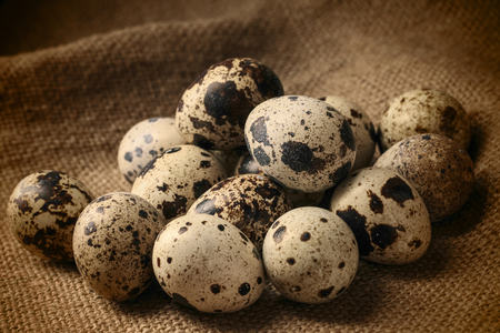 Large group of quail eggs on a jute cloth in a rustic style.