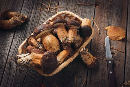 Harvest of wild mushrooms in a wicker basket on a wooden background