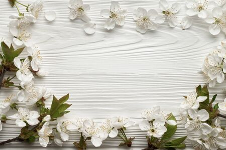Blossoming cherry branches forming a frame with place for text: spring time concept and first flowers. Stock fotó