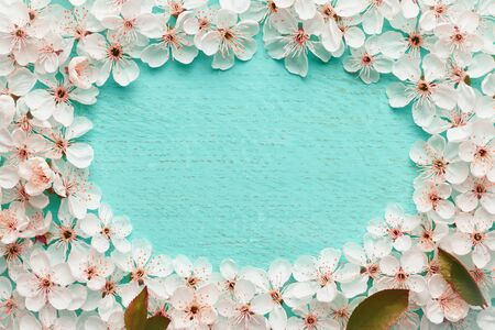 Flowering apple tree forming a frame with place for text top view: spring time concept.