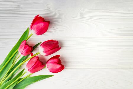 Bouquet of red tulips on a white wooden background with copy space: spring time concept.