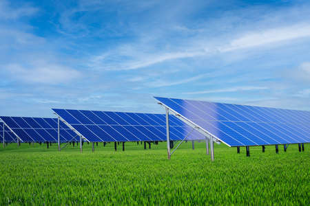Solar panels in green grass against blue sky: green technology concept.