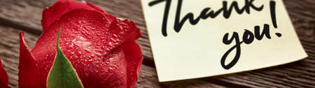 """Close-up of a rosebud and a note saying """"Thank you!"""" banner. 免版税图像"""