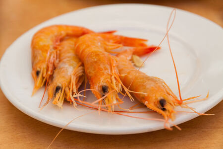 Close up of boiled shrimps on white plate  Low Depth of Field photo