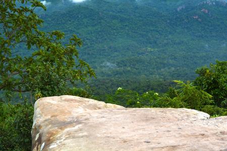 rainforest background: The cliffs in rainforest background. Thailand