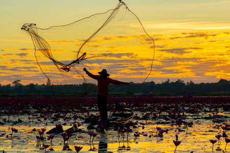 A fisherman casting a net into the water during on sunsrise. Silhouette.