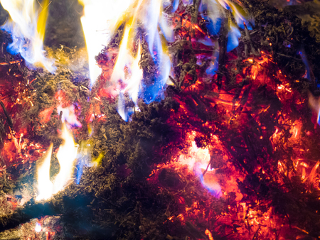 fire burning bonfire blue flame