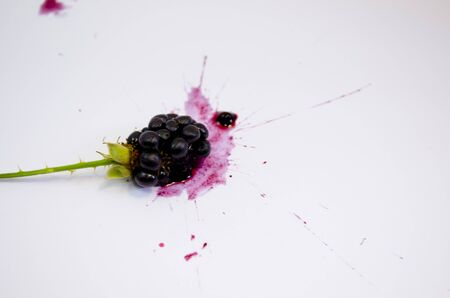 blackberry white background
