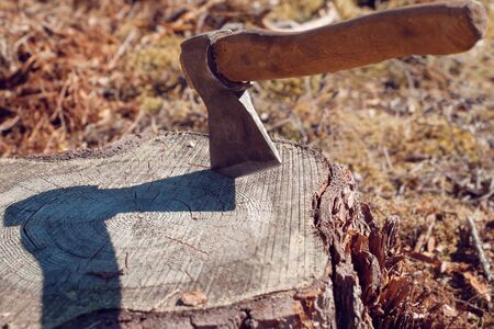 The ax is stuck in a stump. The concept of deforestation on the planet. Deforestation.