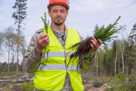 Forester in working uniform. Forest worker holds seedlings in his hands. A man is looking at the camera. Real people work. The concept of reforestation after deforestation. 免版税图像