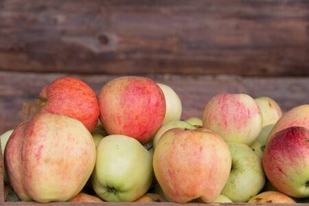 Ripe apples lie on a background of a wooden wall.
