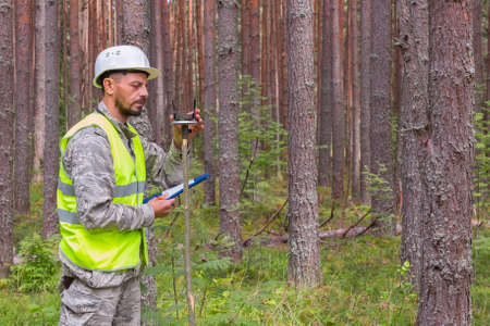 Forest worker works in the forest with a compass. Forestry work concept.