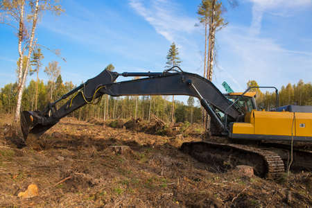 A large excavator works at the site of a felled forest.